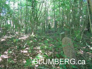 Grobina Jewish Cemetery