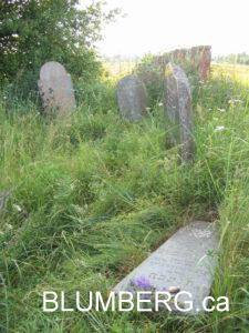Jewish Cemetery in Girkalnis, Lithuania